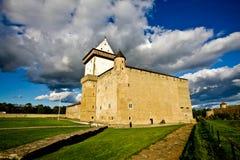 Castello di Narva Immagini Stock
