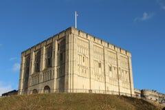 Castello di Norwich alla luce solare luminosa fotografia stock