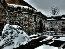Castello di Olavinlinna fotografia stock libera da diritti