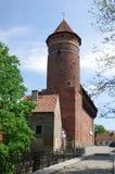 Castello di Olsztyn Fotografia Stock Libera da Diritti