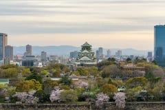 Castello di Osaka con il dictrick concentrare del fiore di ciliegia e di affari di Osaka in atOsaka del fondo, Giappone Scena del immagine stock libera da diritti