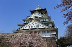 Castello di Osaka, Giappone Immagine Stock Libera da Diritti
