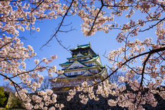 Castello di Osaka, Osaka, Giappone Fotografia Stock