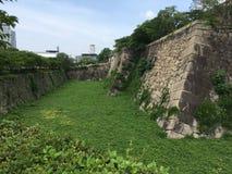 Castello di Osaka, Osaka, Giappone Fotografia Stock Libera da Diritti