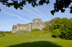 Castello di Oystermouth Fotografie Stock
