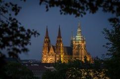 Castello di Praga e cattedrale 2 della st Vitus Fotografia Stock