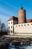 Castello di principi di Glogow fotografia stock libera da diritti