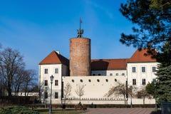 Castello di principi di Glogow Immagine Stock