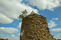 Castello di Regenstein (torre della difesa) Fotografia Stock