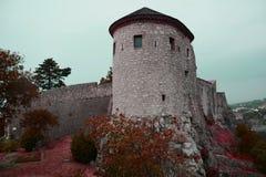 Castello di Rijeka Fotografie Stock Libere da Diritti