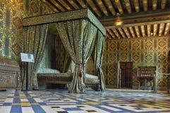 Castello di rinascita di Blois in Loir et in Cher fotografia stock libera da diritti