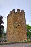 Castello di Riva Dell'Olio di Ponte L'Emilia Romagna L'Italia Fotografia Stock