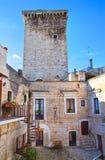 Castello di Rutigliano La Puglia L'Italia Immagine Stock Libera da Diritti