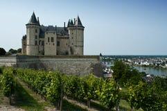 Castello di Saumur Immagine Stock