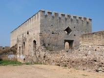 Castello di Szydlow, Polonia Fotografia Stock