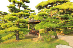 Castello di Takamatsu Immagini Stock