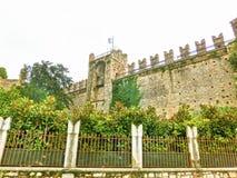 Castello di Torri del Benaco sulla polizia del lago in Italia Immagine Stock Libera da Diritti