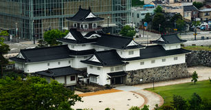 Castello di Toyama: Lato posteriore del castello di Toyama Immagini Stock