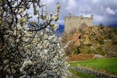 Castello di Ussel in Chatillon nella valle d'Aosta, Italia Fotografia Stock Libera da Diritti
