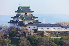 Castello di Wakayama nel Giappone Fotografia Stock Libera da Diritti