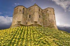 Castello di Warkworth nel cielo Fotografia Stock Libera da Diritti