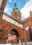 Castello di Wawel - cattedrale - Cracovia Fotografia Stock