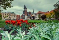 Castello di Wawel a Cracovia poland Fotografia Stock