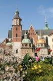 Castello di Wawel, Cracovia, Polonia Immagini Stock Libere da Diritti