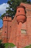 Castello di Wawel in Crakow - vecchia parete Immagine Stock Libera da Diritti
