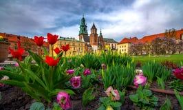Castello di Wawel e punto di riferimento famoso della cattedrale a Cracovia immagini stock