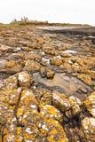 Castello e lichene di Dunstanburgh Immagini Stock Libere da Diritti