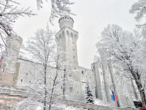 Castello e neve Immagini Stock
