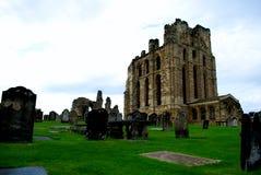 Castello e priore di Tynemouth immagine stock libera da diritti