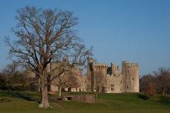 Castello ed albero Immagini Stock Libere da Diritti