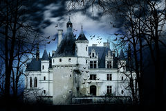 Castello frequentato fotografia stock