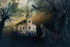 Castello frequentato con i corvi e la scena di orrore immagine stock libera da diritti
