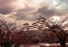 Castello Giappone di Himeiji Immagine Stock Libera da Diritti