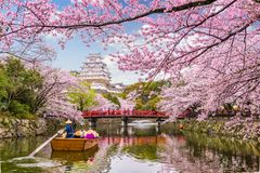 Castello Giappone di Himeji immagine stock libera da diritti