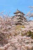 Castello giapponese e bello fiore immagine stock libera da diritti