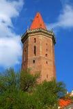 Castello gotico in Legnica 2 Fotografia Stock