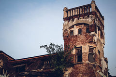 Castello identico Immagine Stock
