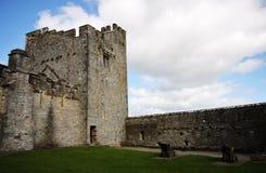 Castello interno di Cahir in Irlanda Immagine Stock