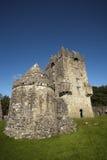 Castello irlandese Fotografie Stock Libere da Diritti