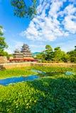 Castello Lily Pad Pond Foreground di Matsumoto V fotografie stock
