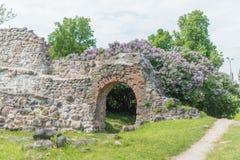Castello livone Immagini Stock