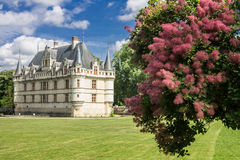 Castello Loire Valley di Chenonceau Fotografie Stock