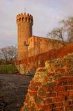 Castello medievale Immagine Stock Libera da Diritti