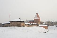 Castello medievale di Kaunas nell'inverno kaunas Fotografie Stock Libere da Diritti