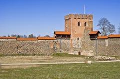 Castello medievale, Medininkai, Lituania Fotografia Stock