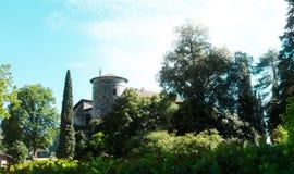 Castello medievale nella natura, foresta fotografia stock libera da diritti